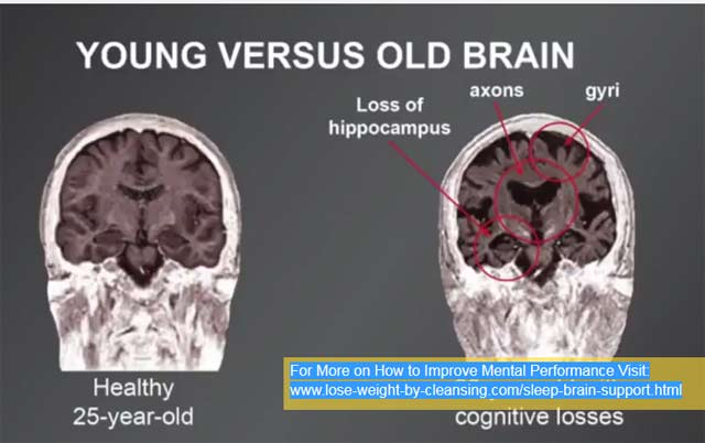 Young Versus older Brain