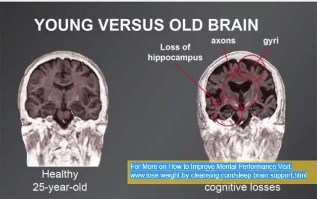 Young Versus older Brain